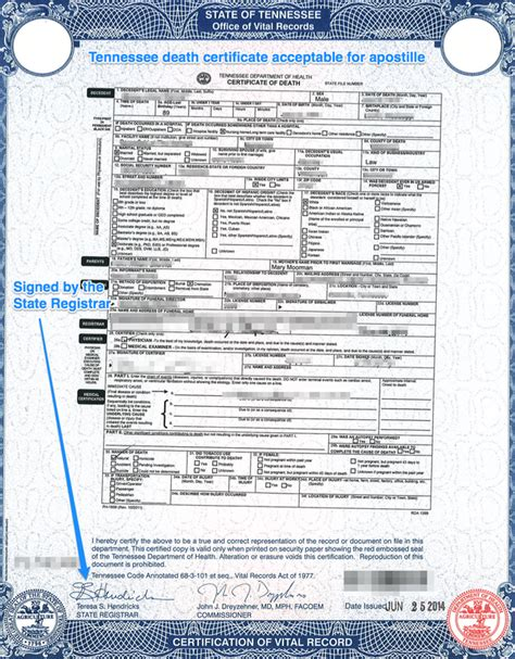 Divorce Records Tennessee State Of Tennessee Apostille Apostille Service
