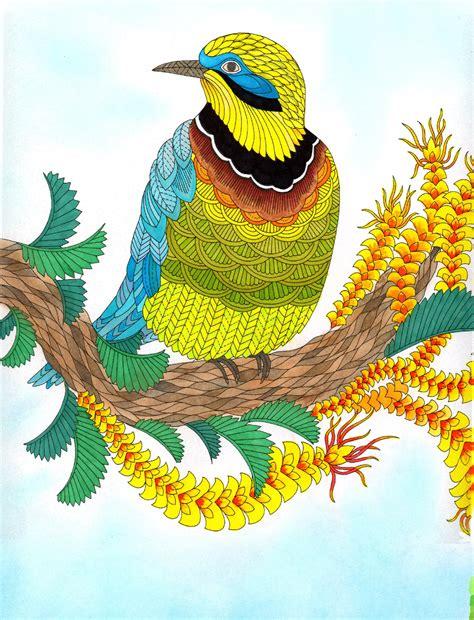 millie marottas wild savannah jual coloring book millie marotta s wild savannah decoupageid tokopedia