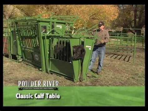 powder river calf table powder river calf table livestockshed com