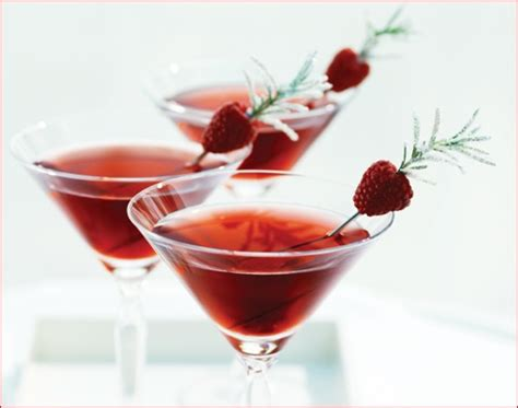 drink garnish raspberry drink garnish garnish ideas pinterest