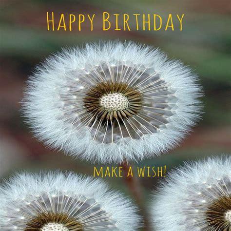 happy in happy birthday nature images
