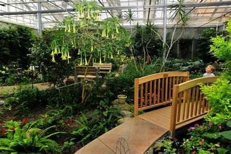 sertoma butterfly house the sertoma butterfly house and aquarium is the most magical place in south dakota