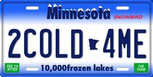 state plates custom made plates national flags gator