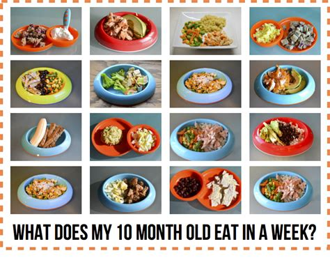 table foods for 10 month what does my 10 month eat in a week baby led