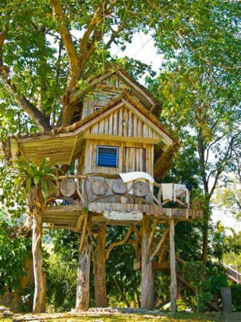 best treehouses 25 best ideas about kid tree houses on pinterest diy