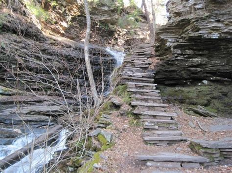 Ricketts Glen State Park Cabins by One Set Of Stairs Picture Of Ricketts Glen State Park