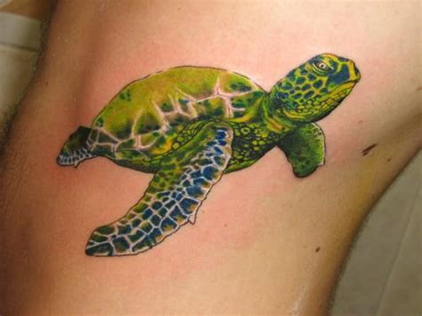 sea turtle tattoos designs que la historia me juzgue january 2012