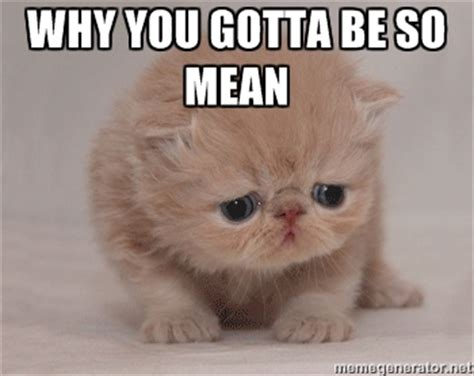 Why You So Mean Meme - mean cat memes image memes at relatably com