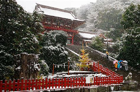 november tokyo tokyo which hasn t seen november snow in over 50 years surprised to wake up in a winter