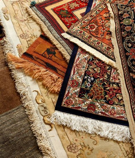 rug cleaning adelaide rug cleaning adelaide professional rug cleaners all