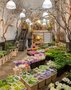 Nearest Flower Shop by The Shop The Flower Market With Kevin