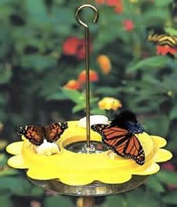Butterfly Feeders For Sale duncraft birdschoice butterfly feeder