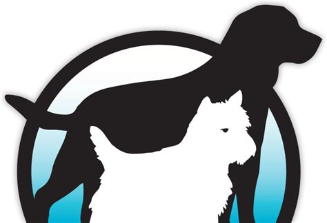 dogs symbol canine pregnancy week by week pets world