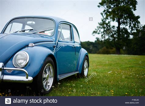 blue volkswagen beetle vintage vintage blue volkswagen vw beetle car on grass stock photo