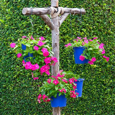 flowers by post 70 hanging flower planter ideas photos and top 10