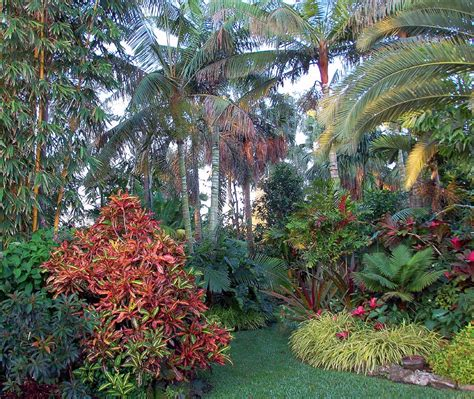 A Tropical Flower Garden With Roses Landscaping Tropical Flower Garden