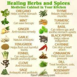 Chinese Herbs Information » home remedies news