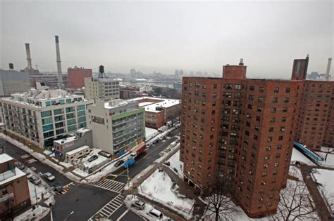 farragut houses 14 suspected drug dealers nabbed at brooklyn nycha building ny daily news