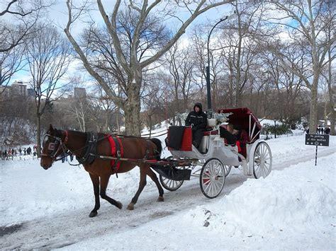 cafe tempesta di neve valentine s day a realty ny
