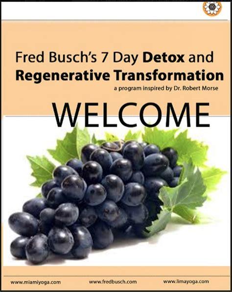 Dr Morse Detox Certification by Transformation A Detox And Regenerative Program
