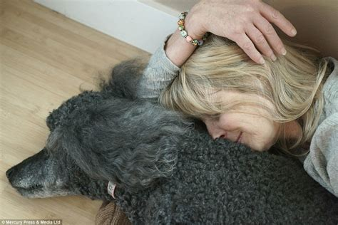 How To Make A Dying Person Comfortable by Dying Pets Held By Their Owners In Heartbreaking