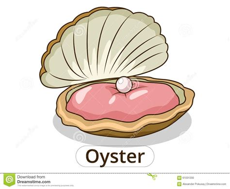 disegni clipart oyster clipart clipart panda free clipart images