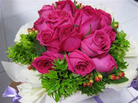 new year pink flower roses new year sweet flower pretty pink