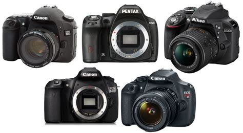 the best dslr the best dslr for 500 the wire realm
