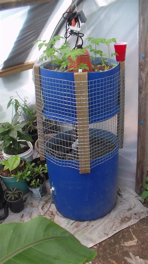 diy backyard aquaponics how to diy aquaponics the how to diy guide on building