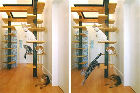 10 foot floor to ceiling cat tree caturday visits japan custom cat friendly home 1389