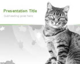 cat powerpoint template cats background for powerpoint