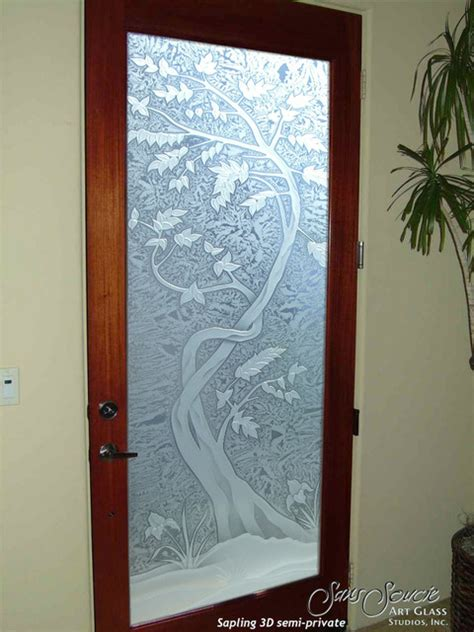 Frosted Glass Front Door Glass Front Doors Glass Entry Doors Sandblast Frosted Sapling 3d Eclectic Entry Other