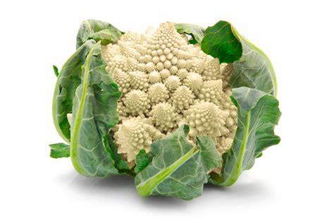 come si cucina il cavolfiore verde ingrediente cavolfiori le ricette dello spicchio d aglio