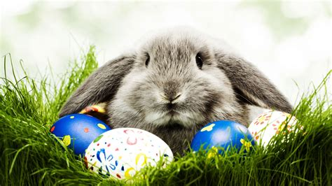 wallpaper free easter 20 hd easter wallpapers