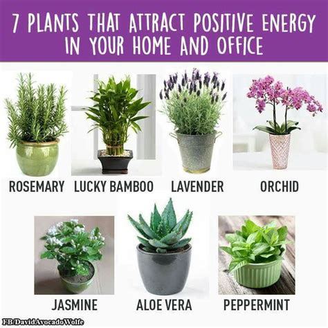 positive energy home decor best 25 home room ideas on decor rooms and meditation space