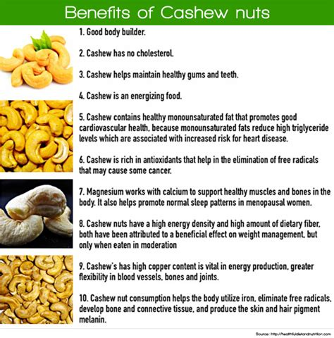 healthy fats cashews what are cashews for le s garden