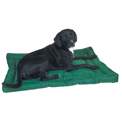 water resistant dog bed slumber pet water resistant dog bed green baxterboo