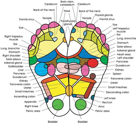 Detox Acupressure by Foot Detox
