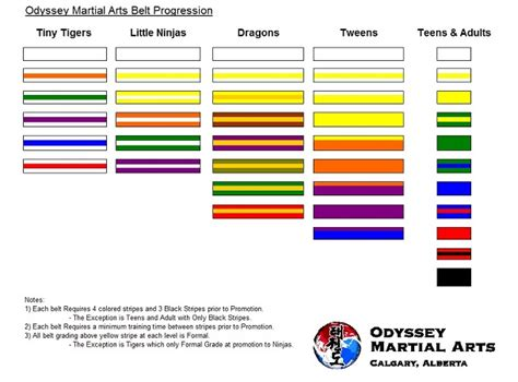 taekwondo belt colors tae kwon do belt ranks car interior design