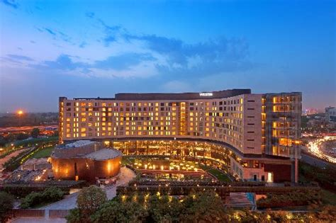 What Should A Five Star Hotel Have To Offer Ground Report | 5 star hotels in gurgaon list info gurgaon five star