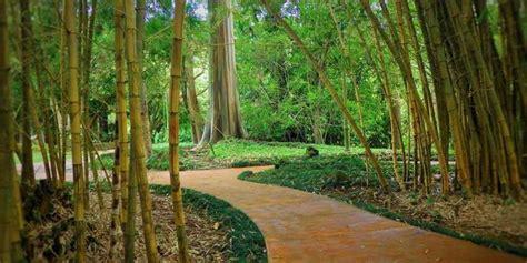Wahiawa Botanical Garden Weddings Get Prices For Wedding Wahiawa Botanical Garden