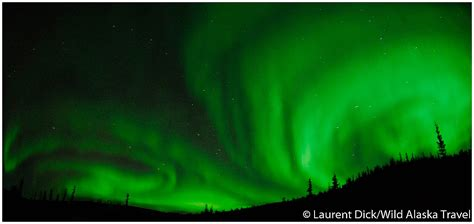 Northern Lights Tours by Alaska Travel Alaska Northern Lights Tour Archives