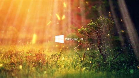 wallpaper engine windows 10 живые обои nature 1080p windows 10 series wallpaper engine