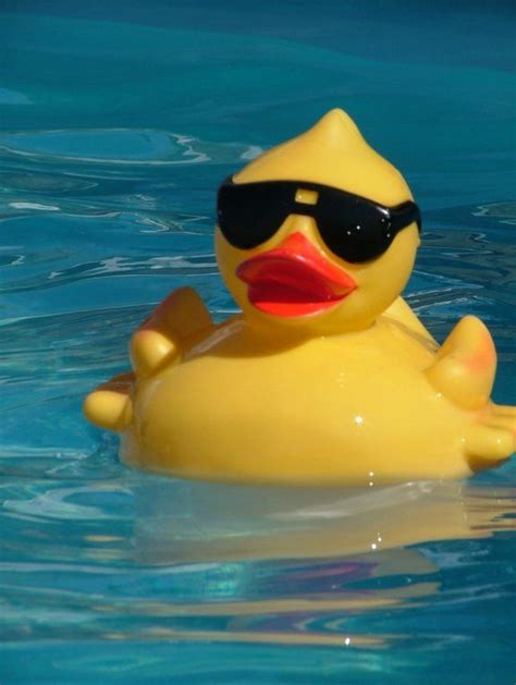 Cool rubber ducks