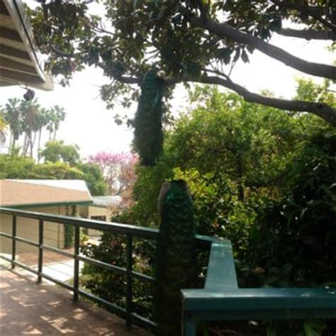 Los Angeles County Arboretum Botanic Garden Arcadia Ca Los Angeles County Arboretum And Botanic Garden Arcadia Ca United States Yelp