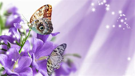 wallpaper bunga ungu gambar wallpaper bunga ungu gudang wallpaper