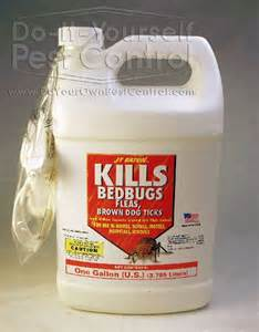 what spray kills bed bugs does kill bed bugs apps directories