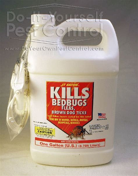 alcohol kills bed bugs jt eaton bed bug spray red 204 o1g gallon kills bed