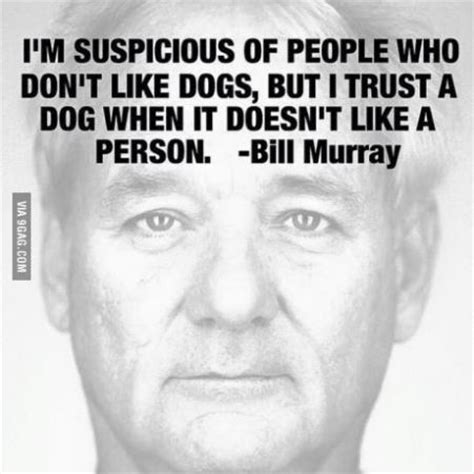 bill murray dogs bartcop entertainment archives tuesday 15 september 2015