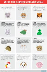 new year animals and meanings happy new year this is what the zodiac